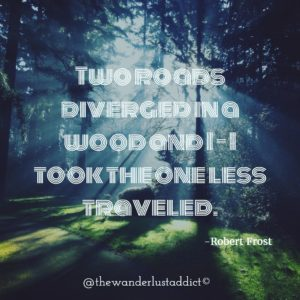 Two roads diverged in a wood and I – I took the one less traveled