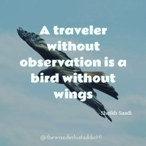 A traveler without observation is a bird without wings